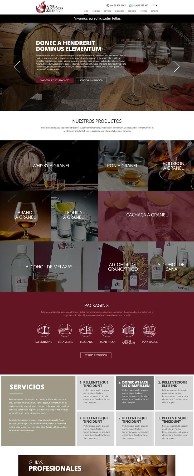 Página web WordPress a medida Castellón